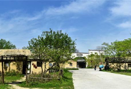 Jiaogang Lake Film and Television City