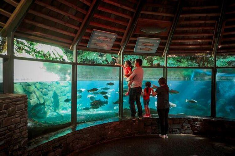 彩虹泉自然公園