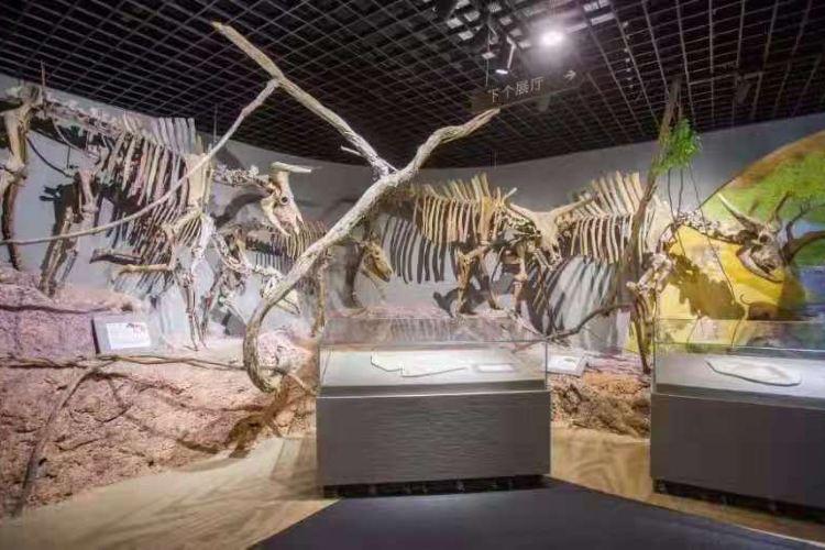 Qiandaohuziran Museum4