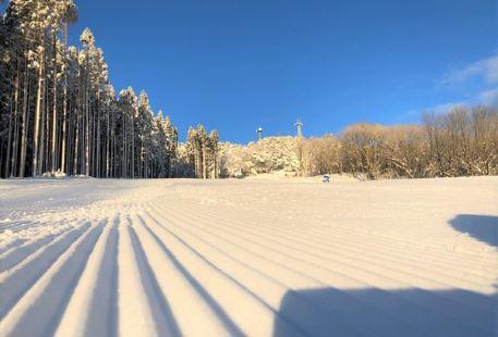 峰山高原リゾート ホワイトピーク&グリーンピーク