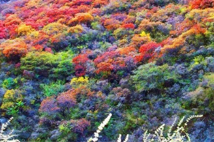 Linzhou Honggushan Scenic Area3