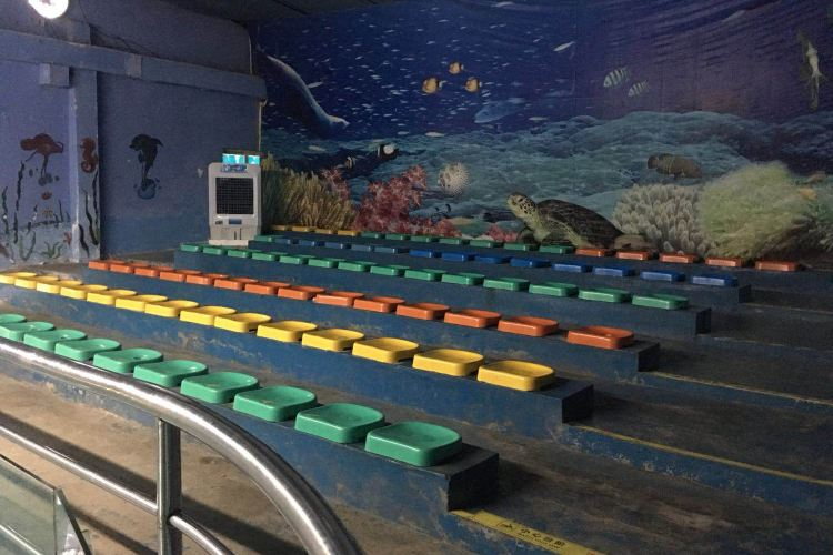 文峰公園海洋樂園3