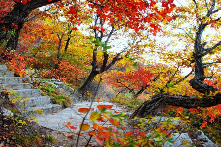Xiantang Mountain4