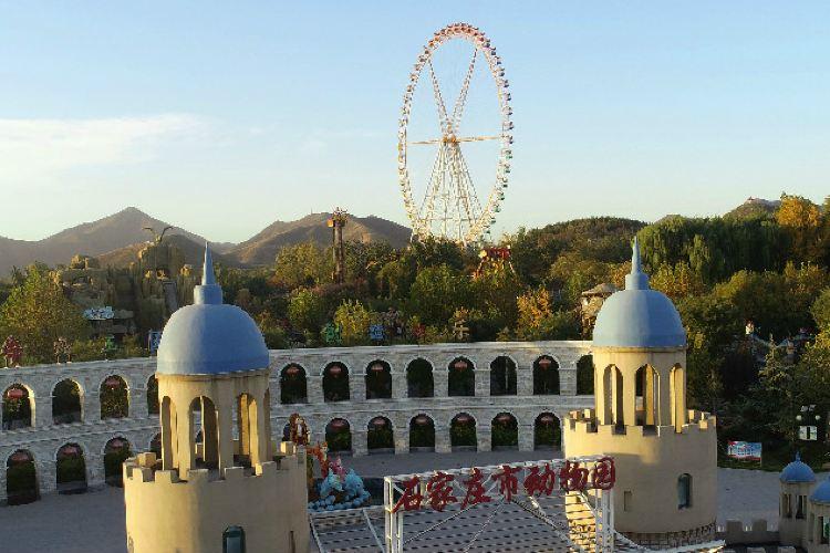 Xinma Kingdom Theme Park3