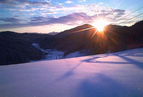 芸北國際滑雪場