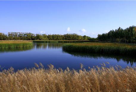 Huanghe Sanshenggong National Park