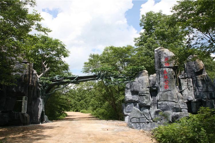 Qingheyuanshi Forest Park2