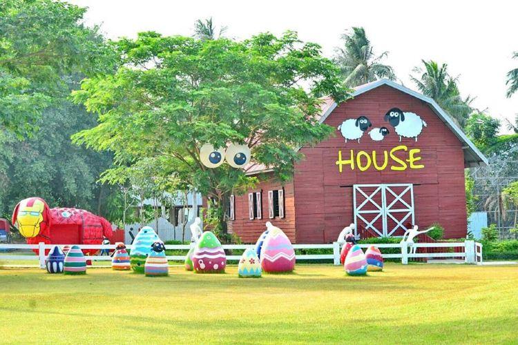 SHEEP HOUSE4