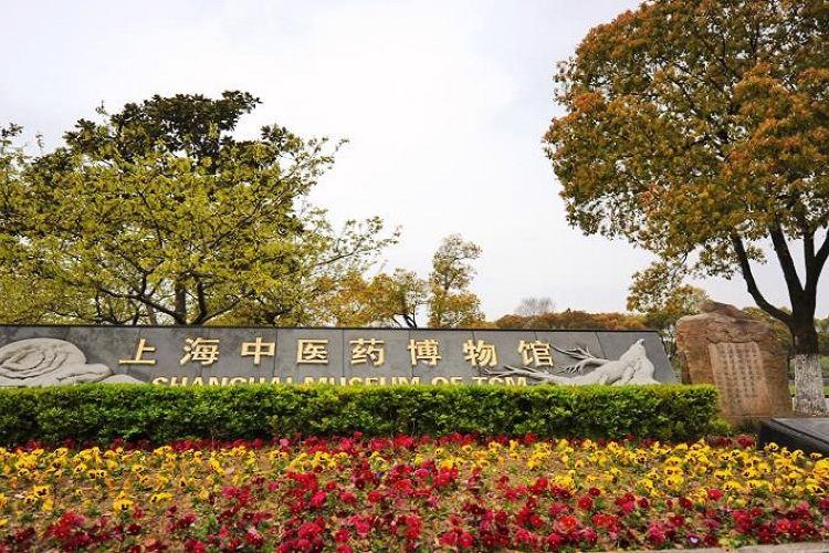 Shanghaizhongyiyao Museum4