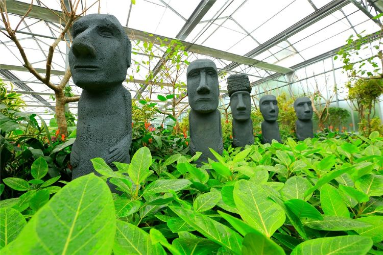 南宮五洲植物樂園2
