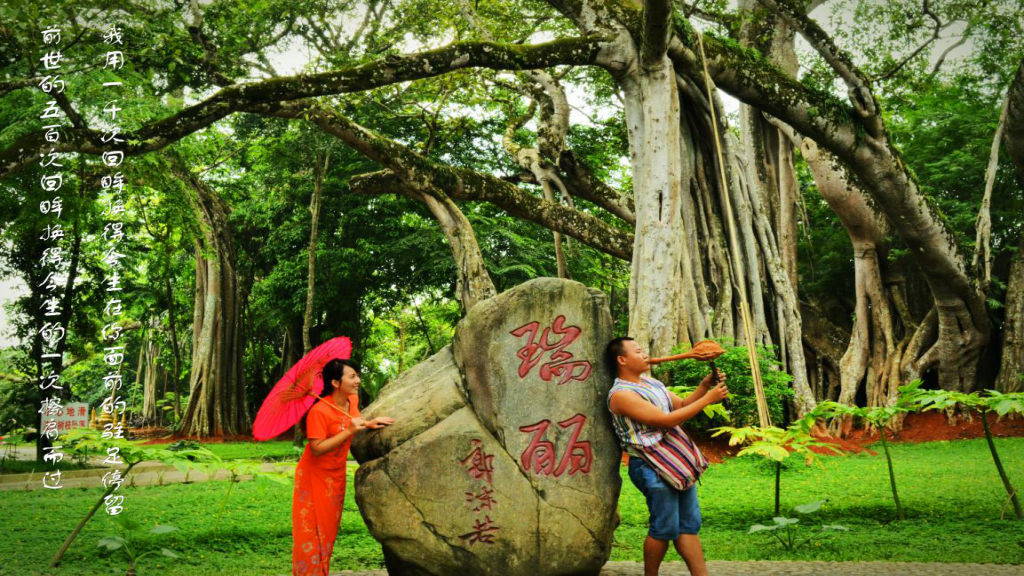 Ruili One Tree Forest