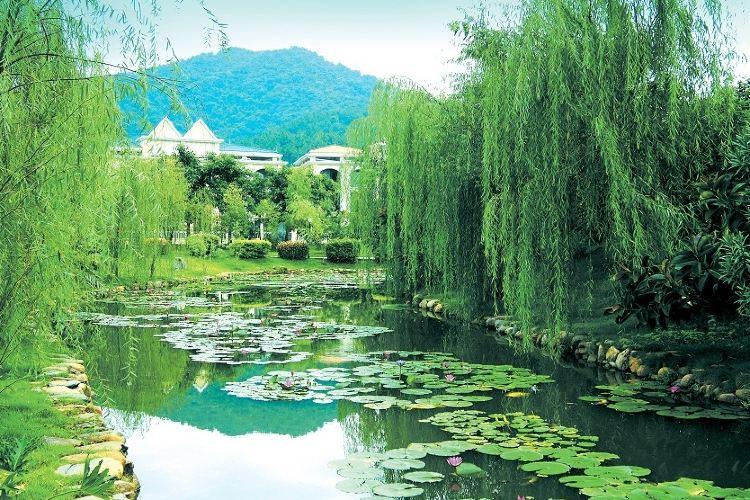 Xinyinzhan Hot Spring Holiday Resort3