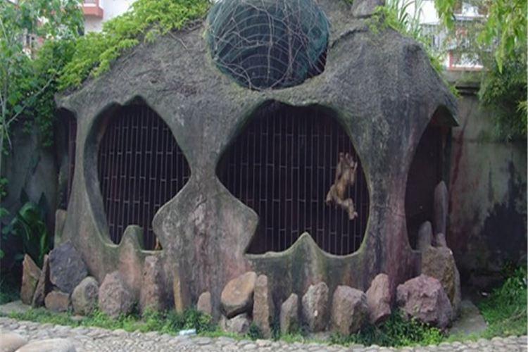 Wuyi Snake Garden4