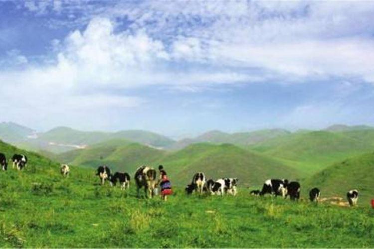 Shaoyang Nanshan Mountain1