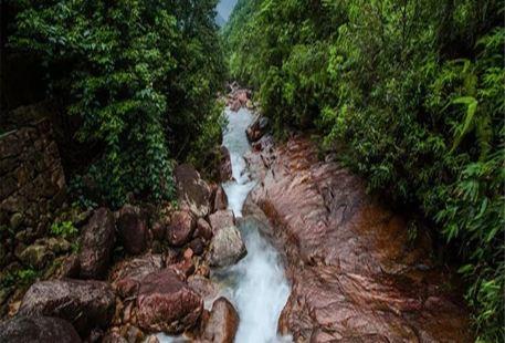 Longjing Mountain