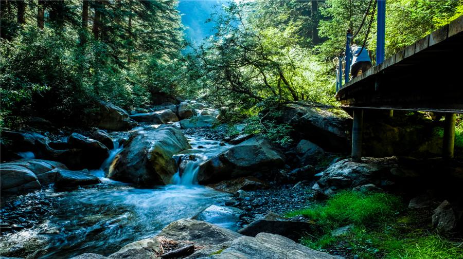 焉支山森林公園