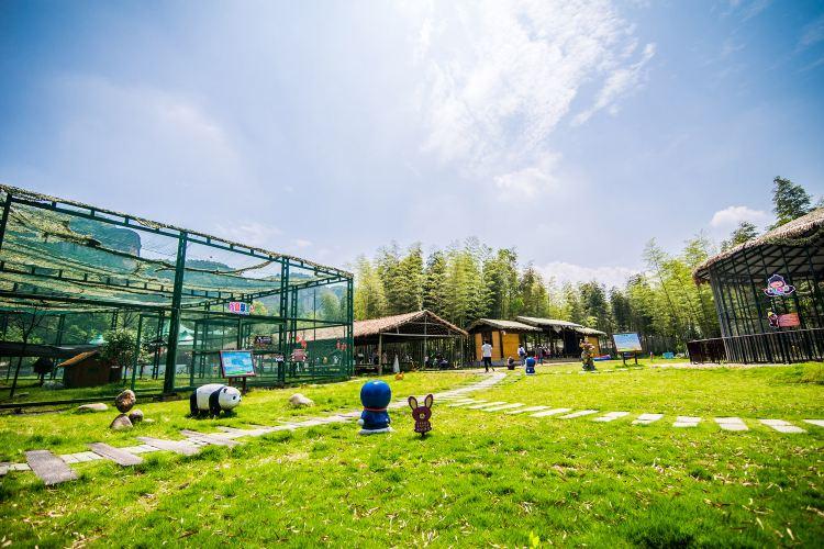 龍虎山仙寵樂園3