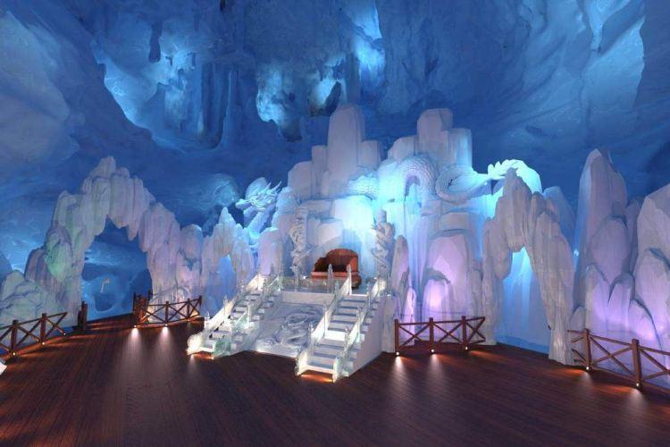 Dragon Palace Wonderland3