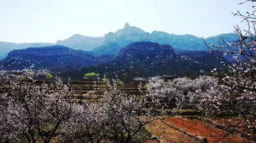 Foguang Mountain