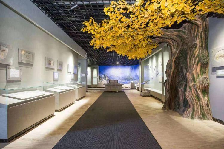 Qiandaohuziran Museum