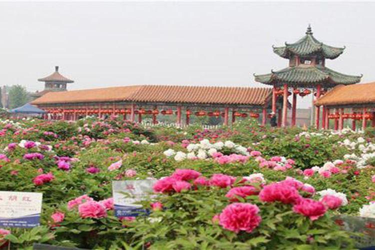 Caozhou Bai Garden2