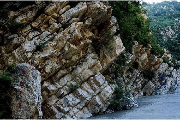 八仙山自然保護區4