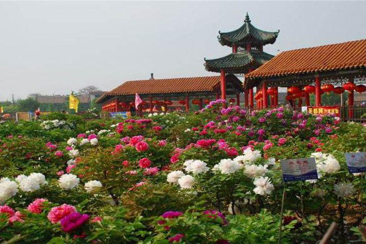 Caozhou Bai Garden3