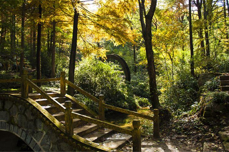 波爾登森林公園3