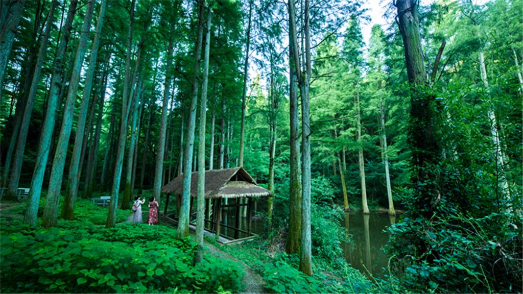 波爾登森林公園