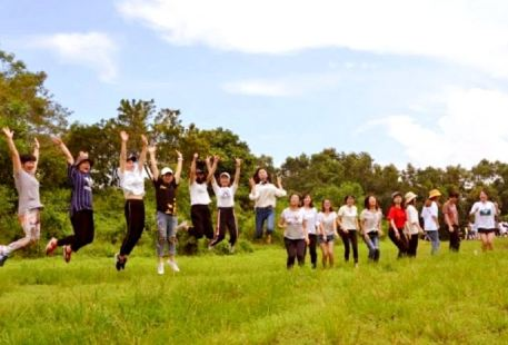Jiulong Mountain Ecology Farm
