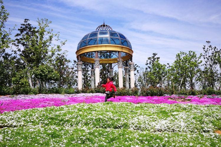 닝보 식물원4