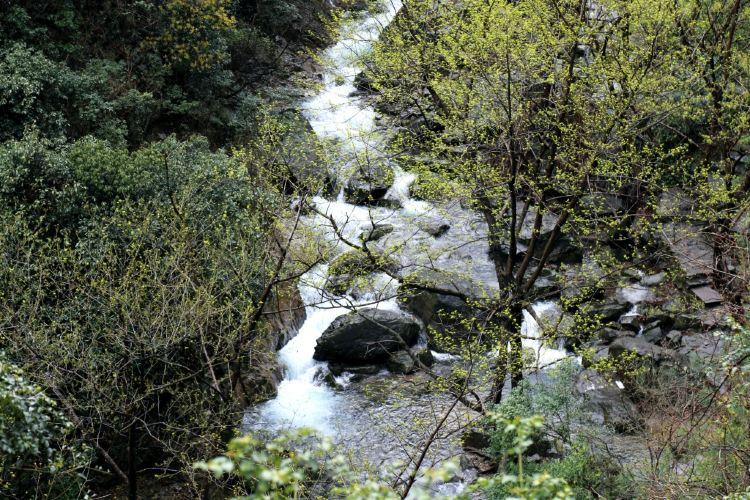 Ningbo Wulongtan Scenic Spot4