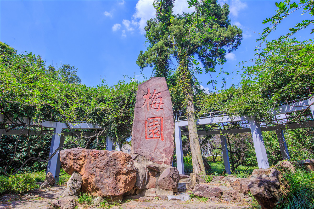 Mei Garden