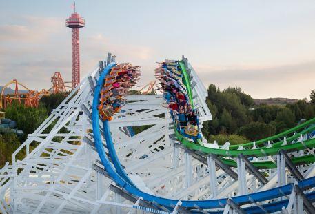 Six Flags Magic Mountain Theme Park