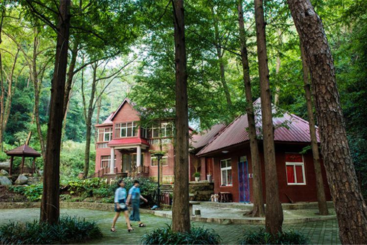 波爾登森林公園2