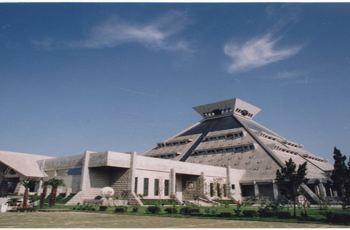 奇妙博物館