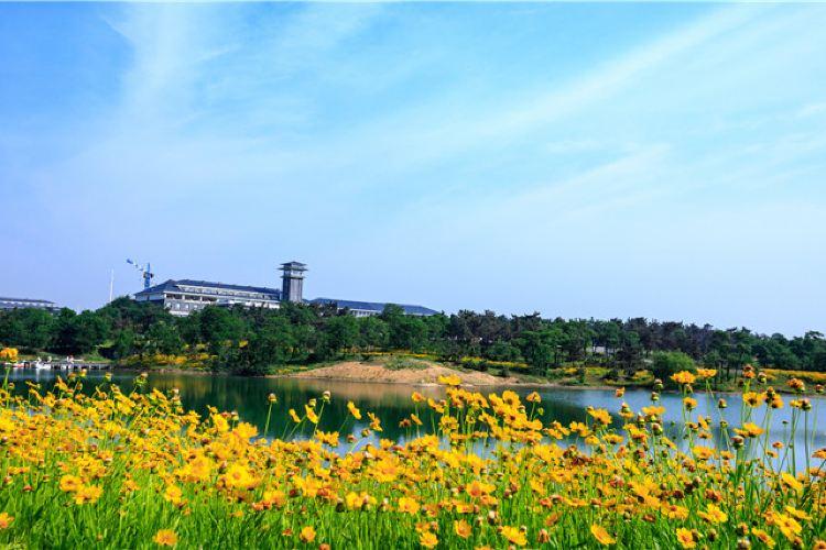 青松嶺森林公園1