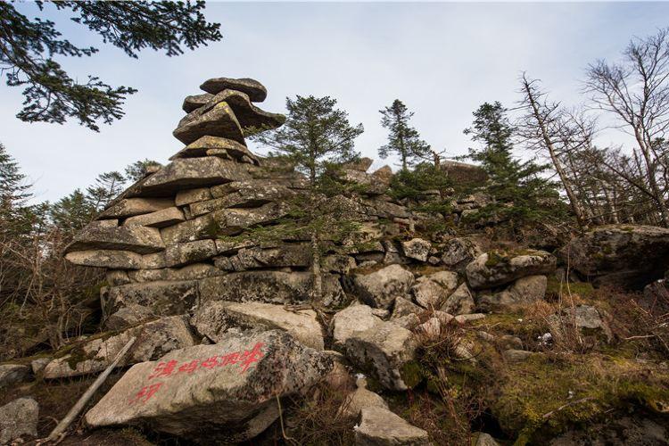 Qingheyuanshi Forest Park4
