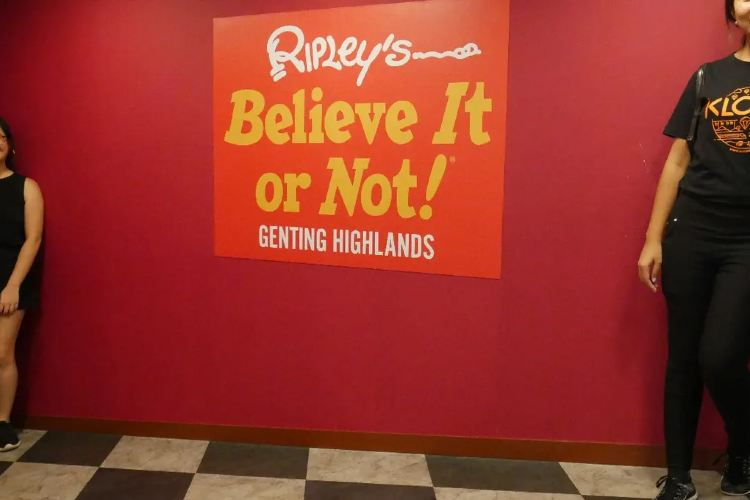 Ripley's Believe It or Not! Odditorium3