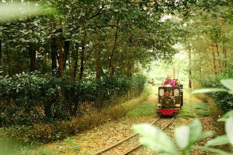 다람쥐숲 삼림공원1
