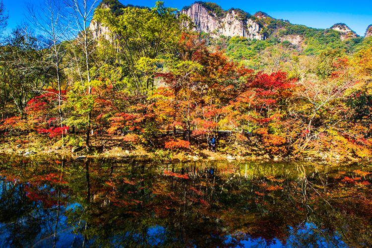 蒲石河森林公園4
