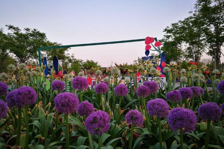 닝보 식물원1