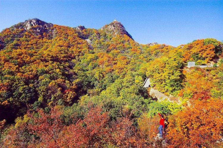 八仙山自然保護區3