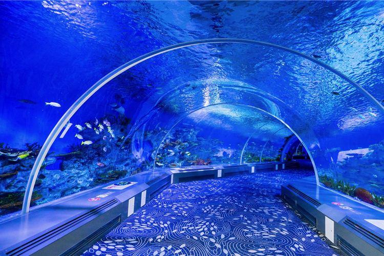 Rizhao Ocean Park2