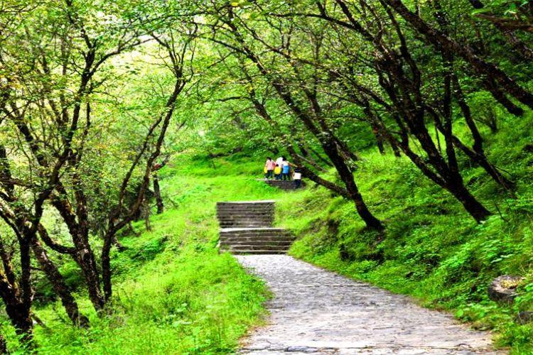 Huzhu Beishan National Geopark2