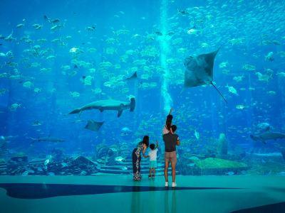 アトランティス・ザ・パーム/ロスト・チェンバー水族館