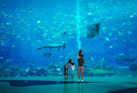 The Lost Chambers Aquarium (Sanya)