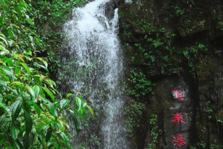 Niumulin Nature Reserve3