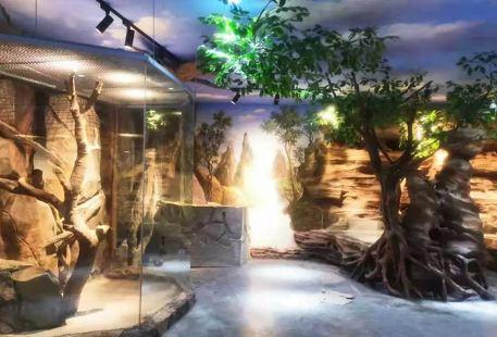 Nantong Senlin Yesheng Zoo