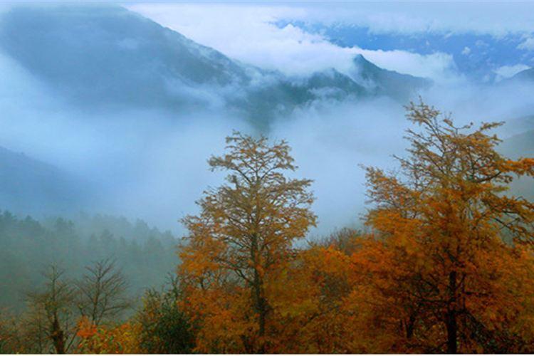 大熊山國家森林公園4